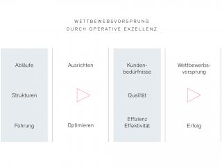 Grafik zur Veranschaulichung der Hauptpunkte in der Managementberatung von SHS in Österreich.